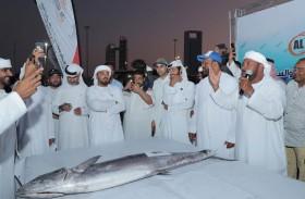 أبوظبي الدولي للرياضات البحرية يطرح أغلى أسماك الكنعد في المزاد لصالح الأعمال الخيرية