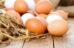خبراء تغذية يدافعون عن البيض