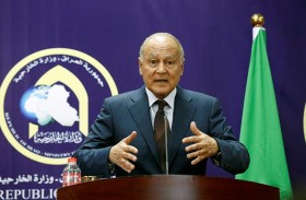 أبو الغيط يؤكد أهمية التمسك بحل الدولتين للقضية الفلسطينية