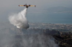 كارثة بيئية في جزيرة إيفيا اليونانية بسبب حريق مدمر