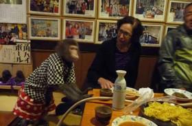 مقهى يوظف القرود لخدمة الزبائن
