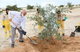 بلدية الحمرية تطلق مشروعها «نزرع للمستقبل» بمواصلة التعاون مع المؤسسات والمدارس في نشر زراعة الأشجار والشتلات