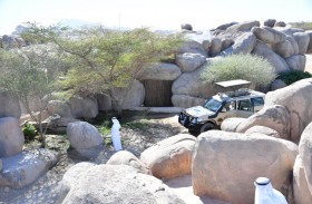 تناغم بين البيئة الصحراوية والأفريقية في سفاري العين