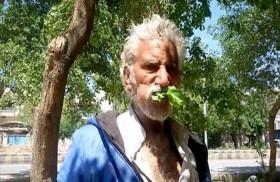 يأكل أوراق الأشجار لـ25 عامًا