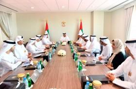 """منصور بن زايد يترأس جلسة استثنائية """"للوزاري للتنمية"""" في معرض دبي للطيران"""
