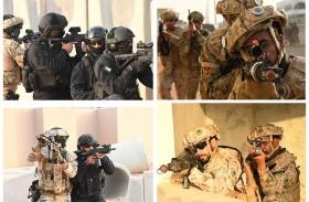 استمرار فعاليات التمرين العسكري المشترك «الثوابت القوية 1» بين الإمارات والأردن