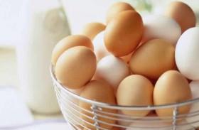 البيض وقوة النظر.. دراسة تكشف النفع الكبير