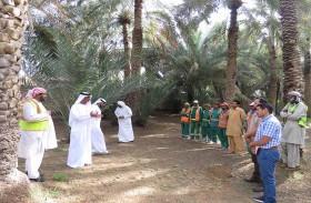 بلدية مدينة العين تنظم سلسلة ورش زراعية للسكان وطلاب المدارس والموظفين