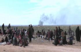 «قسد: لا خيار أمام داعش غير الاستسلام