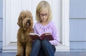 وجود كلب يساعد الأطفال على الدراسة