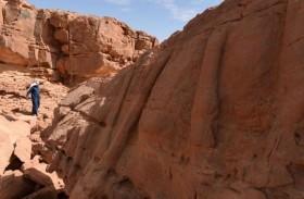 منحوتات صخرية في السعودية عمرها 7 آلاف سنة