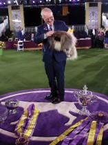 ديفيد فيتزباتريك يحتضن كلبه -الذي فاز- بعد فوزه بجائزة الأفضل في نيويورك. رويترز