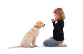 دراسة: الكلاب تقوي مناعة الأطفال ضد أمراض الجلد والربو