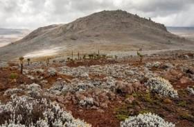اكتشاف أقدم مستوطنة بشرية