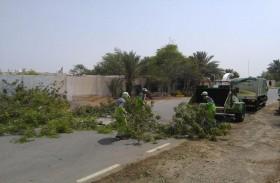 بلدية الحمرية تباشر وفق خطتها إزالة الأضرار جراء الأمطار وترفع حالة التأهب