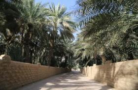 بلدية مدينة العين تبدأ مشروع إنشاء خطوط المياه المغذية للواحات