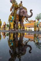 مسيرة للأفيال مع المهنئين أثناء موكبهم بالقرب من القصر الكبير لتقديم تحاياهم للملك التايلاندي الجديد في بانكوك. أ ف ب