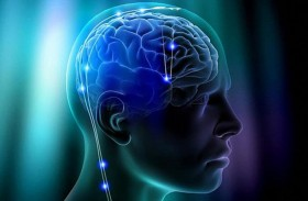 كيف يتصور الدماغ شكل أجسامنا ؟