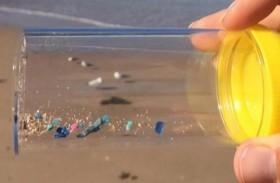البشر يستهلكون بلاستيك أسبوعيا بحجم بطاقة ائتمان