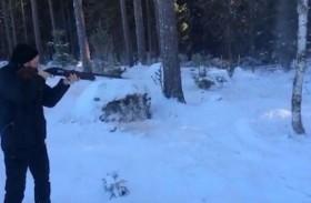 يقطع الأشجار عبر إطلاق النار عليها