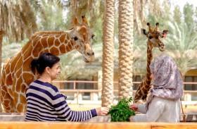 حديقة الإمارات للحيوانات تستعد لموسم عطلات المدارس ببرامج ترفيهية وعائلية خاصة