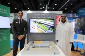 «مدار» تفتتح بنهاية العام الحالي أول مزرعة داخلية في العالم تعتمد على طاقة مصابيح «LED» في أبوظبي