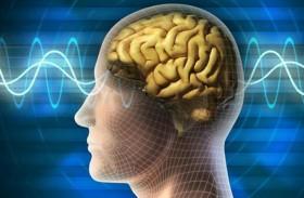 كيف يؤثر الإنترنت على وظائف الدماغ؟