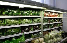 «خدمات المزارعين» يفتتح فرعا جديدا لبيع المنتجات المحلية بمدينة زايد