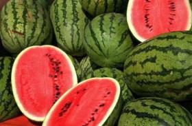 يحصل على 7 ملايين دولار بسبب البطيخ !