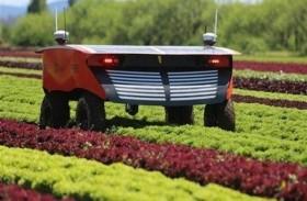 مستقبل الزراعة في العالم.. على كاهل الروبوتات