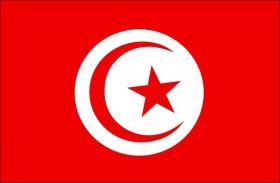افتتاح المؤتمر العربي العاشر لرؤساء مؤسسات التدريب والتأهيل الأمني بتونس
