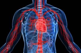 كيف تُنشّط الدورة الدموية؟