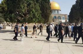 مستوطنون يطعنون فلسطينياً وتوتر في الأقصى