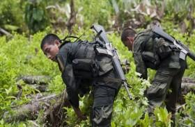 مواجهات مستمرة بين مزارعي الكوكا والقوات الأمنية في كولومبيا