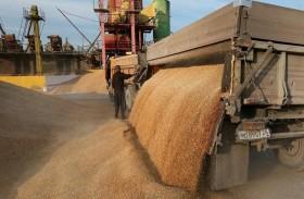 وزارة التجارة العراقية تحتاج السيولة لإعادة بناء مخزون الحبوب