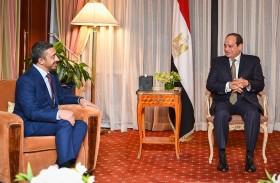 الرئيس المصري يستقبل عبدالله بن زايد في نيويورك