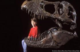 اهتمام الطفل بالديناصورات دليل على ذكائه