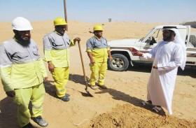 كهرباء الشارقة تنجز مشروعات لتعديل الشبكات والغاء الخطوط الهوائية في المنطقة الوسطى