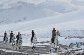 زعيم كوريا الشمالية اشترى خيولا روسية بنصف مليار دولار