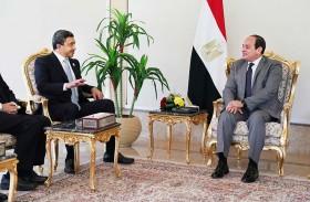 الرئيس المصري يبحث مع عبدالله بن زايد العلاقات الثنائية والأوضاع في المنطقة
