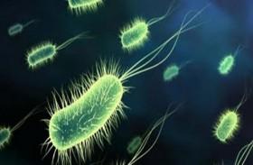علامات تكشف امتلاء أجسامنا ببكتيريا ضارّة