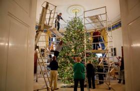 من أين يتم إحضار شجرة عيد الميلاد للبيت الأبيض؟