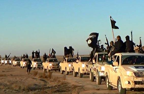 القاهرة: ندعم الحسم العسكري ضد الجماعات  الإرهابية  في العراق وسوريا وليبيا في إطار الشرعية
