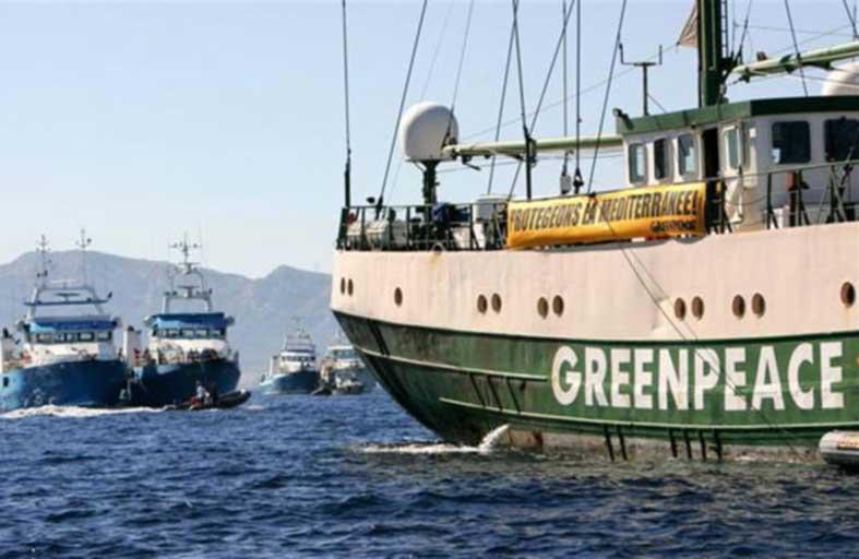 عميل فرنسي يعتذر عن إغراقه سفينة لغرينبيس